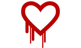 Heartbleed Security Bug